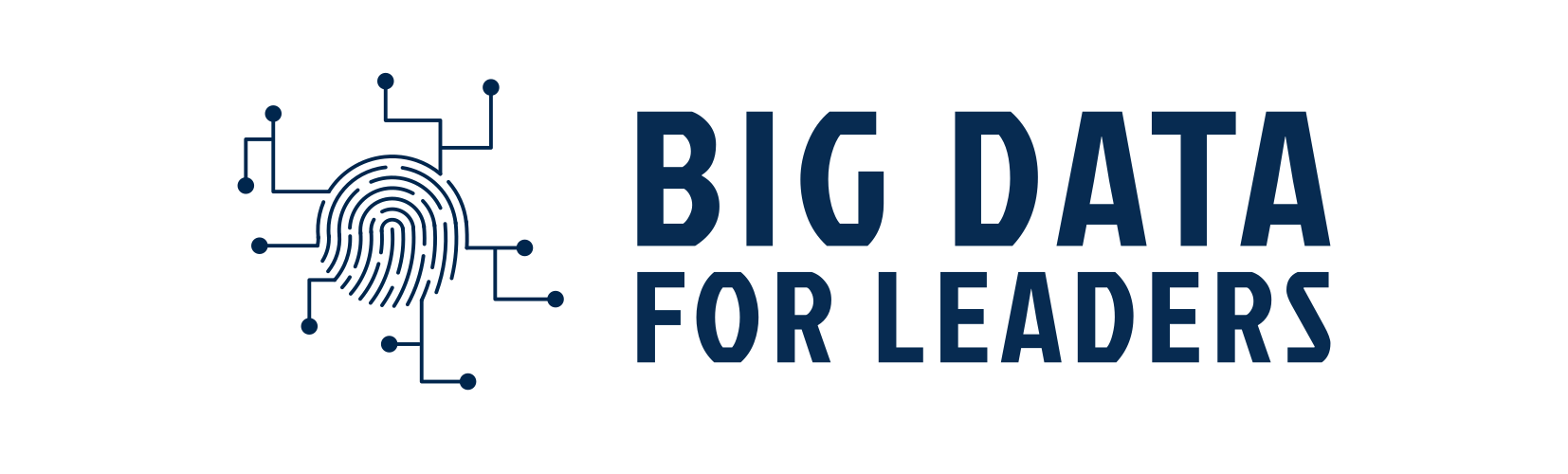 Big Data for Leaders
