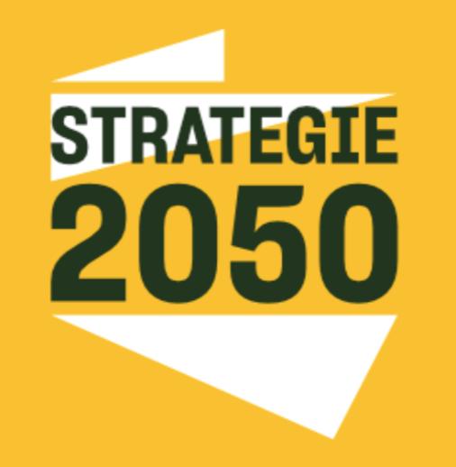 Instytut Strategie 2050